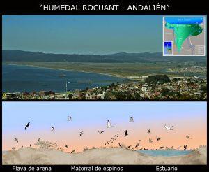Humedal Rocuánt - Andalién