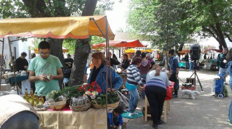 Seis años de Feria Agroecológica Córdoba construyendo Soberanía Alimentaria