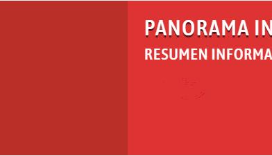 PANORAMA INFORMATIVO DE LA RNMA N°305