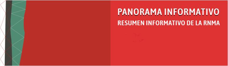 PANORAMA N°313