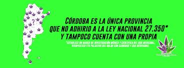 Córdoba atrasa: criminalización del uso medicinal del cannabis