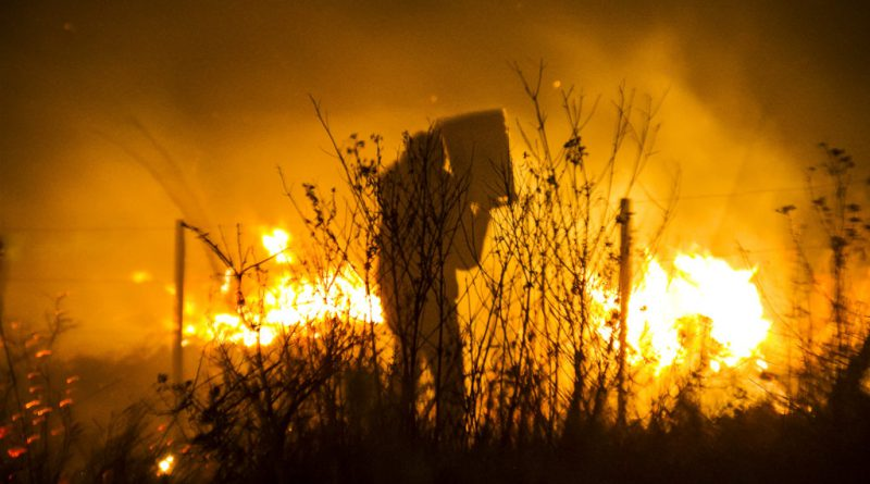 Informe ¡Arde Córdoba! Parte 1 En el 2020 se quemaron más de 80 mil hectáreas.
